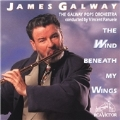 The Wind Beneath My Wings:James Galway(fl)/Vincent Fanuele(cond)/The Galway Pops Orchestra