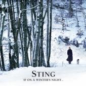 If On A Winter's Night... [CD+DVD]<初回限定盤>
