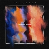 Blessing in Disguise CD