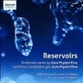 Reservoirs - Orchestral Works by Guto Pryderi Puw