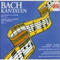 Bach: Kantaten, Magnificat, etc / Rotsch, Shirai, et al