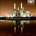 Jonathan Goldstein: Cyclorama