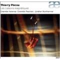Thierry Pecou: Les Lasons Magnetiques