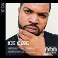 Icon: Ice Cube