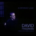 A Different Light: David Friedman Sings His Own Songs
