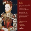 T.Tallis: Ave, rosa sine spinis