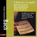 Bach: Musical Offering / Schoenbrunn Ensemble