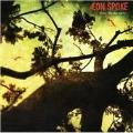 Drive Me Crazy [12inch Vinyl Disc] [Single]