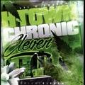 H-Town Chronic Vol.11
