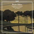 B.Walter: Symphony in D minor / Leon Botstein(cond), NDR SO