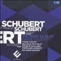 Schubert: The Trout - Piano Quintet, An Sylvia D.891, Gretchen am Spinnrade D.118, etc