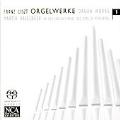 Liszt: Organ Works Vol.1 -Ave Maria, Andante Religioso, etc / Martin Haselbock