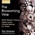 The Blossoming Vine - Italian Maestri in Poland