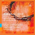 J.S.バッハのマタイ受難曲について - ヴィーラント・シュミットの語りと音楽で綴るイエスの物語(ドイツ語)