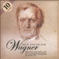 Great Singers Sing Wagner (10-CD Wallet Box)