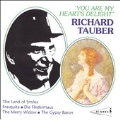 You Are My Heart's Delight / Richard Tauber