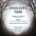 Erkki-Sven Tuur: Peregrinus Ecstaticus, Noesis, Le pods des vies non vecues