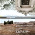 """W.Jeths: Monumento - Scale """"Le Tombeau de Mahler"""", Third String Quartet, etc"""