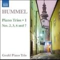 Hummel: Piano Trios Vol.1 - No.2, 3, 6 and 7