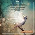 Reznicek: Konzertstuck fur Violine & Orchester
