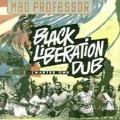 Black Liberation Dub