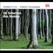 クルト・マズア/Schumann: Im Schatten des Waldes [0300156BC]