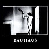 Bauhaus (UK)/In The Flat Field[144361300]