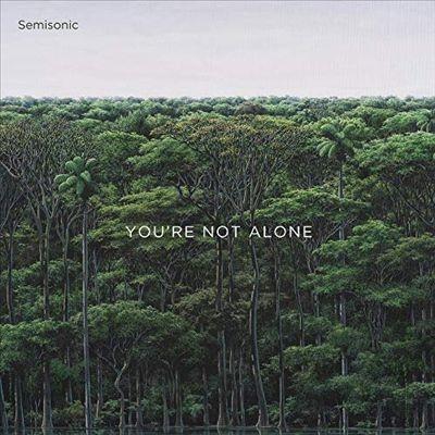 Semisonic/You're Not Alone[PLSU11]