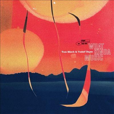 Tom Misch/What Kinda Music<Black Vinyl>[1212310]
