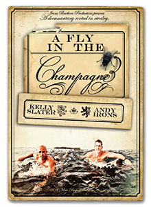 A Fly in the Champagne[VISF-14]