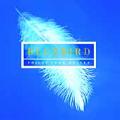 Bluebird - Voices from Heaven / New College Oxford