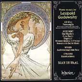 Godowsky: Piano Music / Rian de Waal