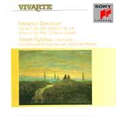 Dotzauer: Quintet, Quartet, etc / Anner Bylsma, et al