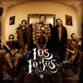 Wolf Tracks (The Best Of Los Lobos) [Remaster]