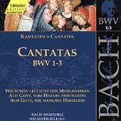 Bach: Cantatas Nos 1-3