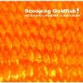Scooping Goldfish!
