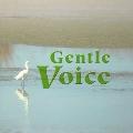 Gentle Voice