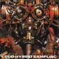 LOUD-HYBRID SAMPLING