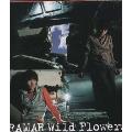 Wild Flowers/Social Climber