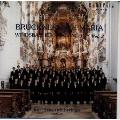 ヴィンスバッハ少年合唱団/ブルックナー: アヴェ・マリア / ウィンズバッハ少年合唱団 2 [25CM-419]