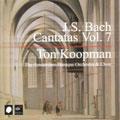 J.S. Bach: Cantatas Vol 7 / Koopman, Amsterdam Baroque