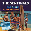 Big Surf!/Surfer Girl