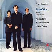 Schubert: Piano Trios, etc / Schiff, Shiokawa, Perenyi