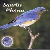 Sunrise Chorus