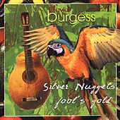 Silver Nuggets & Fool's Gold / David Burgess