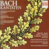 Bach: Kantaten BWV 26, 173, 173a / Hans-Joachim Rotzsch