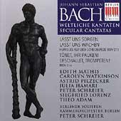 Bach: Secular Cantatas, BWV213 and 214