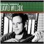 David Wilcox (American)/Vanguard Visionaries: David Wilcox [VANM73173]